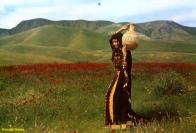 Afghan Koochi Dress