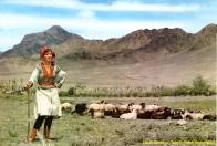 Afghan Dress of Dara-e Petch